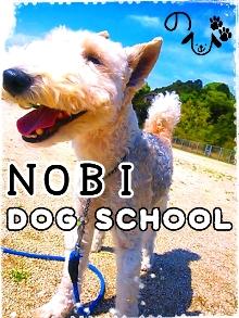 のび DOG SCHOOL1-200.jpg