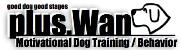 犬のしつけと管理の専門家plusWan犬のしつけ方教室