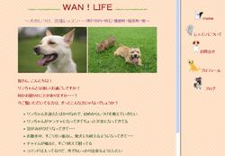 WAN!LIFE